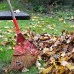 Best Rake For Leaves On Gravel